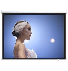DigitMX DMX-PSE100.43 Electric Projector Screen 4:3 100'' 2.00x1.50  Armenius